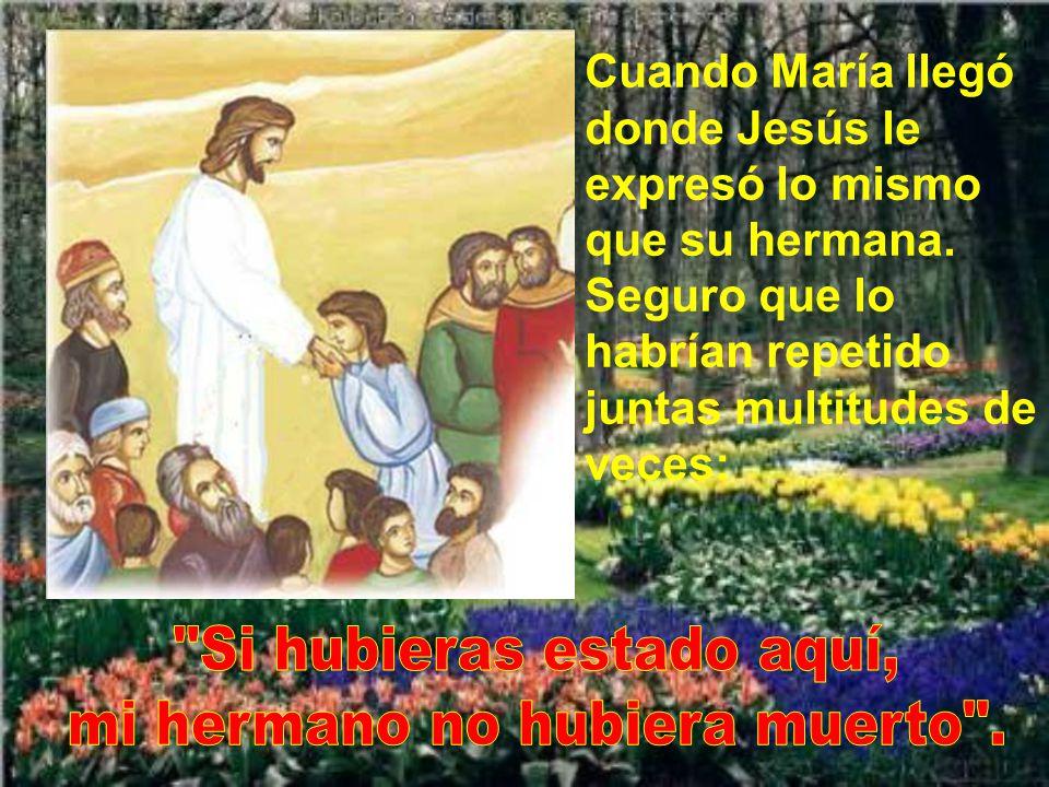 Marta se marchó a buscar a su hermana María. Y tiene la delicadeza de decirle que Jesús la llamaba. María se levantó rápidamente. Muchos judíos la aco