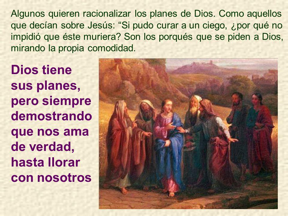 Que nosotros, cuando vayamos a misa, encontremos también al amigo: a Jesús, que nos espera en el sagrario, y que viene más especialmente en la consagr