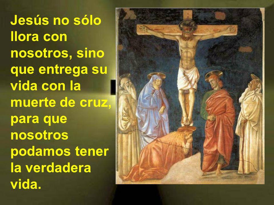 Algunos quieren racionalizar los planes de Dios. Como aquellos que decían sobre Jesús: Si pudo curar a un ciego, ¿por qué no impidió que éste muriera?