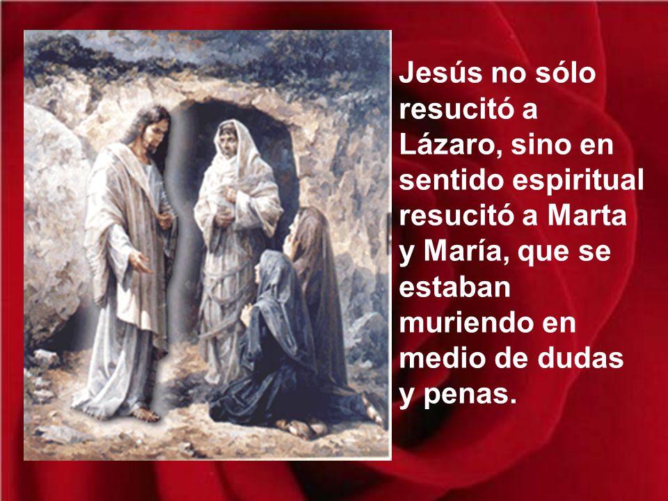 Pero no todos, pues algunos fueron a decírselo a los enemigos de Jesús, que desde este momento buscaban una ocasión para matarle. No basta escuchar la