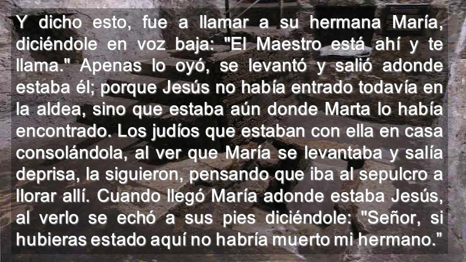 Lo creemos, y lo encontramos en la materia, y en el CUERPO, en la vida y en la muerte Por el Espíritu, creemos que Jesús es el Hijo de este mundo Interior de la iglesia de Betania