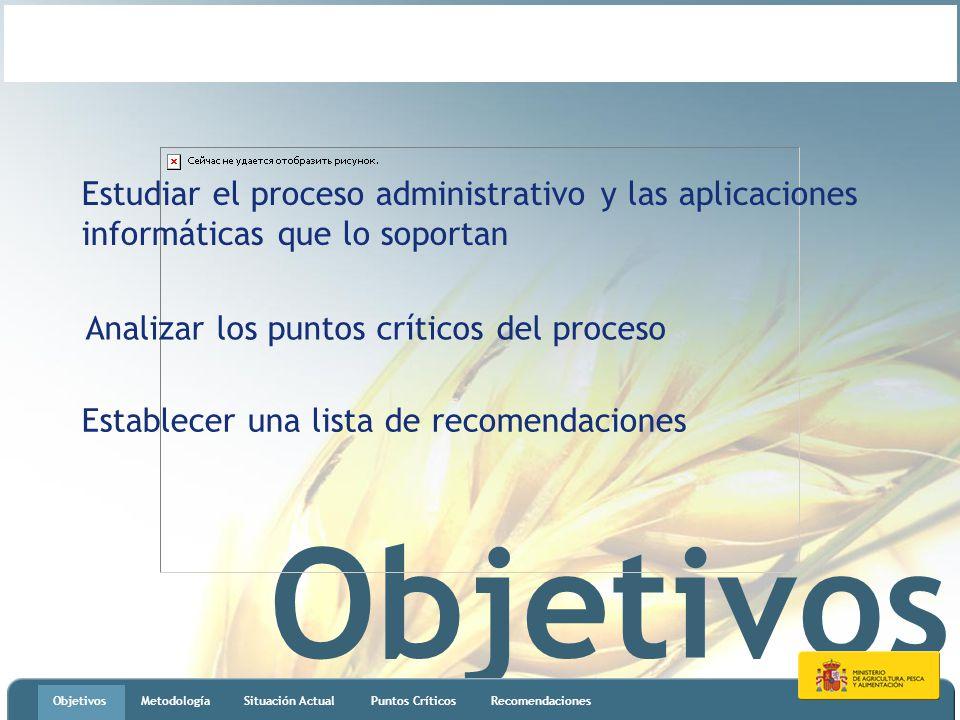 Objetivos MetodologíaSituación ActualPuntos CríticosRecomendaciones Estudiar el proceso administrativo y las aplicaciones informáticas que lo soportan Analizar los puntos críticos del proceso Establecer una lista de recomendaciones