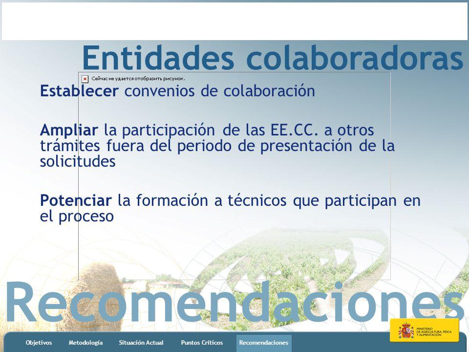 Recomendaciones ObjetivosMetodologíaSituación ActualPuntos CríticosRecomendaciones Entidades colaboradoras Establecer convenios de colaboración Ampliar la participación de las EE.CC.