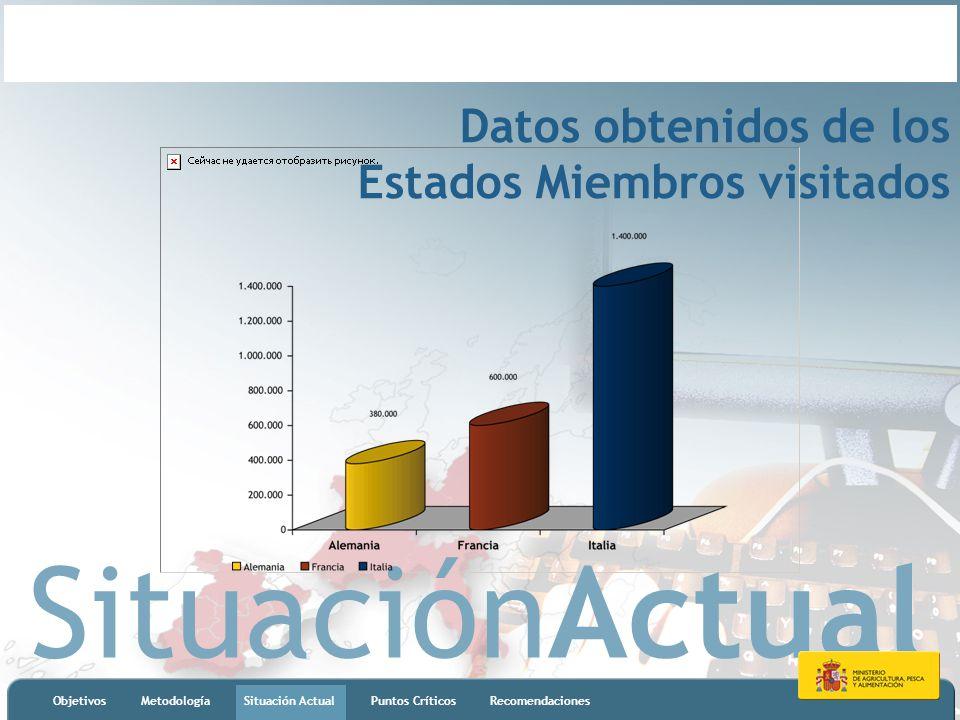 SituaciónActual ObjetivosMetodologíaSituación ActualPuntos CríticosRecomendaciones Datos obtenidos de los Estados Miembros visitados