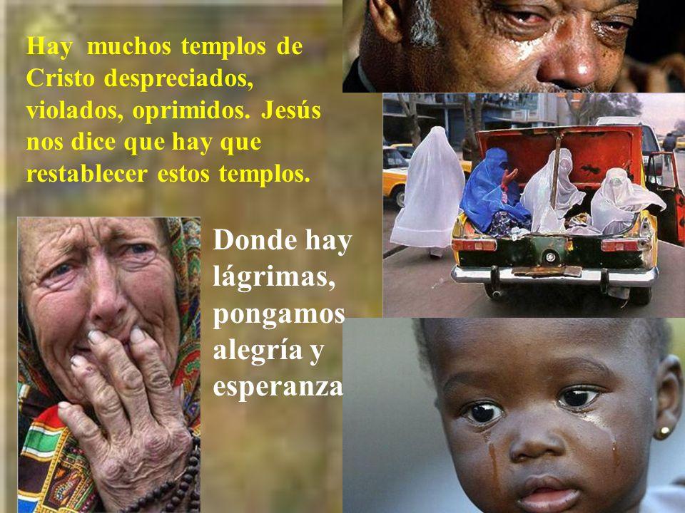 Es necesaria una cierta violencia, aunque con amor, para defender los templos vivos de Dios.