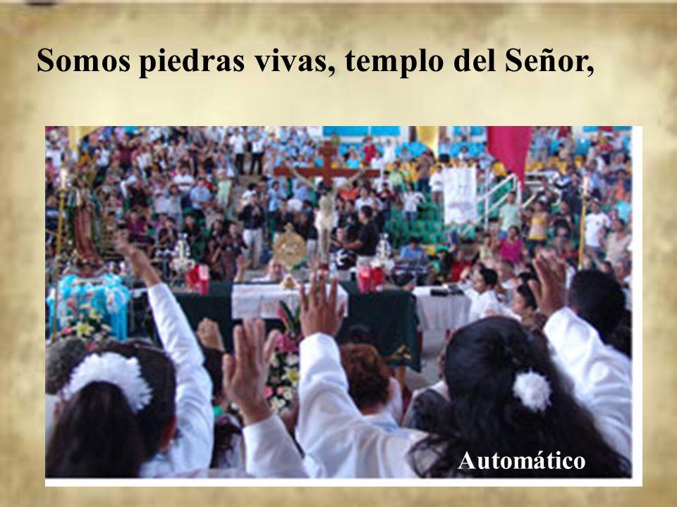 Y nosotros somos piedras vivas de ese templo. La Iglesia viva es el templo de Jesús en la tierra.