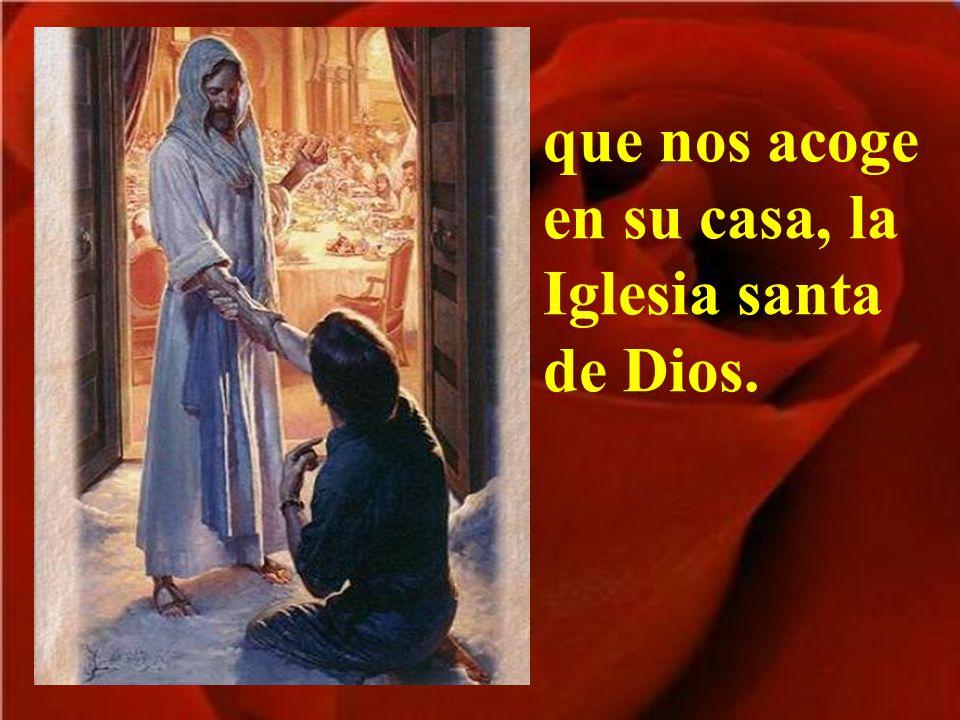 Por las puertas de la vida encontramos al Señor,