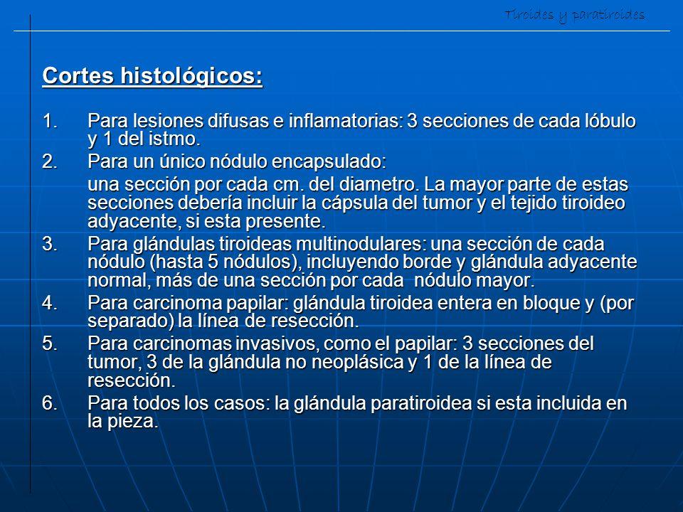 Tiroides y paratiroides Cortes histológicos: 1.Para lesiones difusas e inflamatorias: 3 secciones de cada lóbulo y 1 del istmo. 2.Para un único nódulo