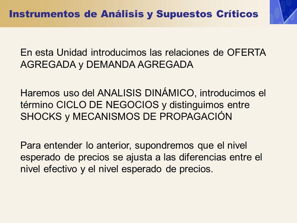 Instrumentos de Análisis y Supuestos Críticos En esta Unidad introducimos las relaciones de OFERTA AGREGADA y DEMANDA AGREGADA Haremos uso del ANALISI