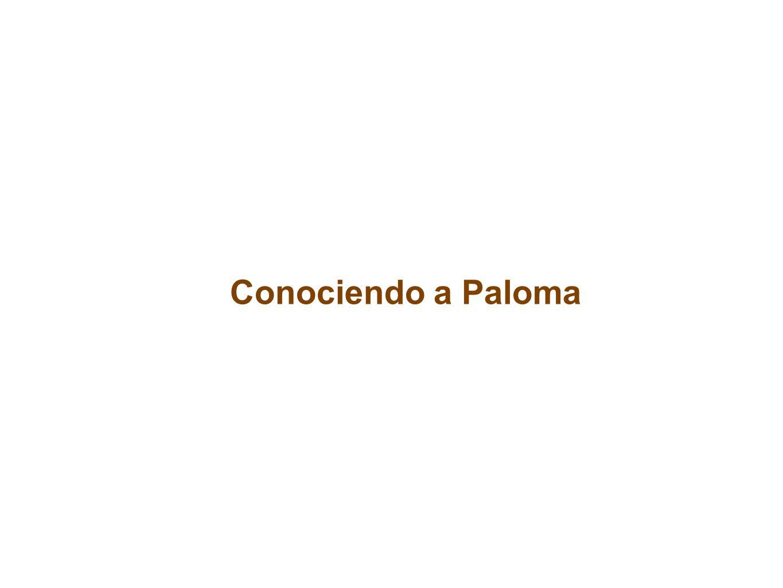 Conociendo a Paloma