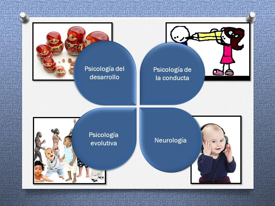 Psicología evolutiva Neurología Psicología del desarrollo Psicología de la conducta