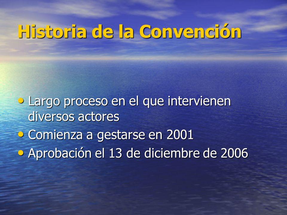 Historia de la Convención Largo proceso en el que intervienen diversos actores Largo proceso en el que intervienen diversos actores Comienza a gestars