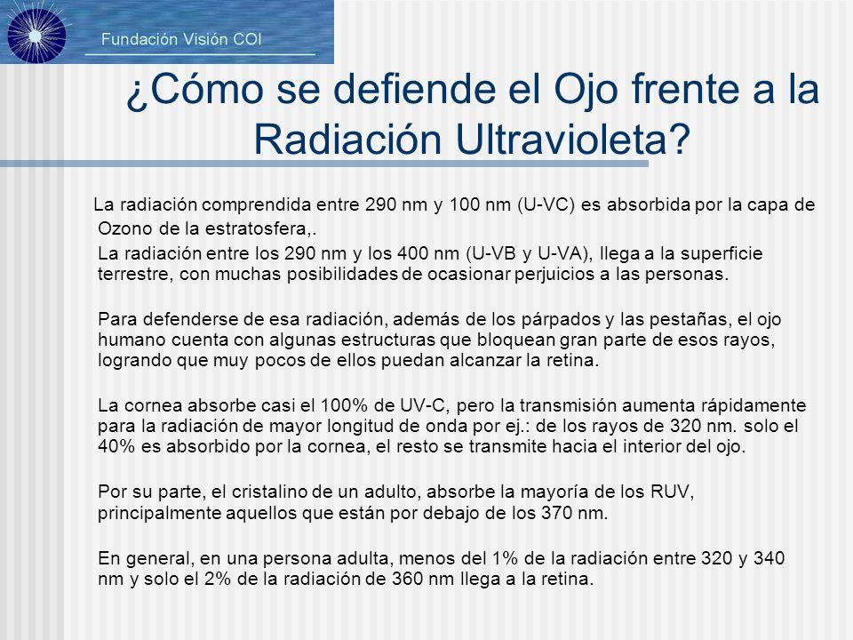 ¿Cómo se defiende el Ojo frente a la Radiación Ultravioleta? La radiación comprendida entre 290 nm y 100 nm (U-VC) es absorbida por la capa de Ozono d