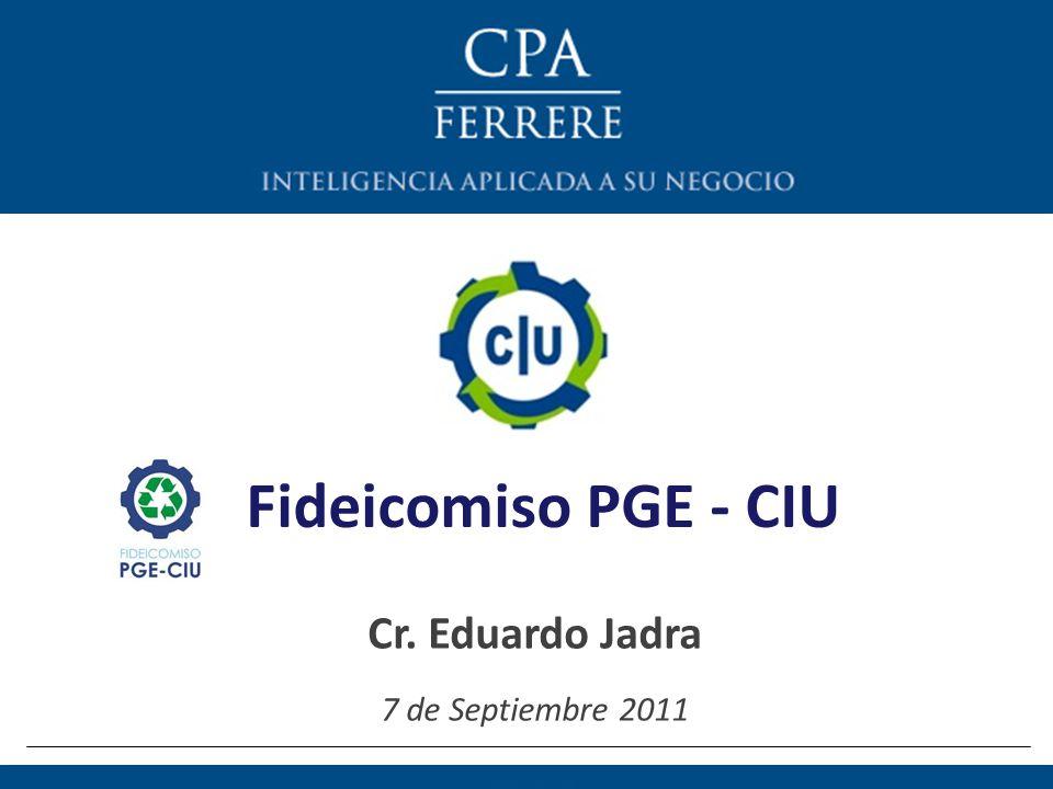 Índice 1)Operativa del PGE 2)Funcionamiento del Fideicomiso 3)¿Por qué un Fideicomiso.