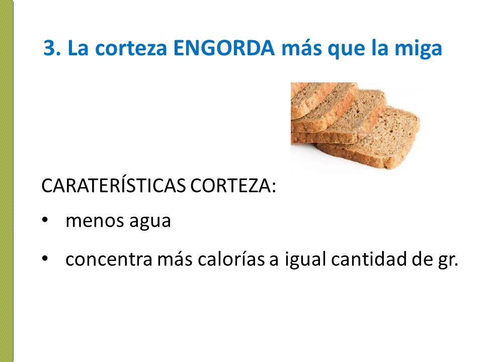 3. La corteza ENGORDA más que la miga CARATERÍSTICAS CORTEZA: menos agua concentra más calorías a igual cantidad de gr.