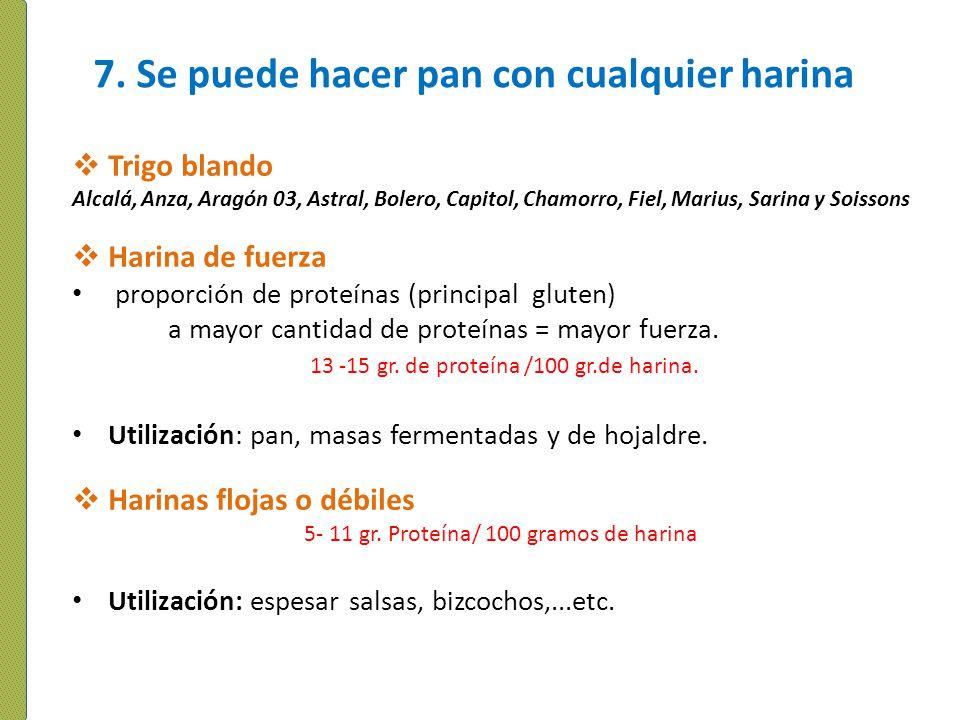7. Se puede hacer pan con cualquier harina Trigo blando Alcalá, Anza, Aragón 03, Astral, Bolero, Capitol, Chamorro, Fiel, Marius, Sarina y Soissons Ha