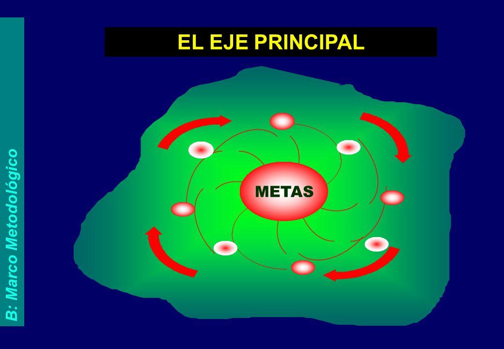 METAS EL EJE PRINCIPAL B: Marco Metodológico