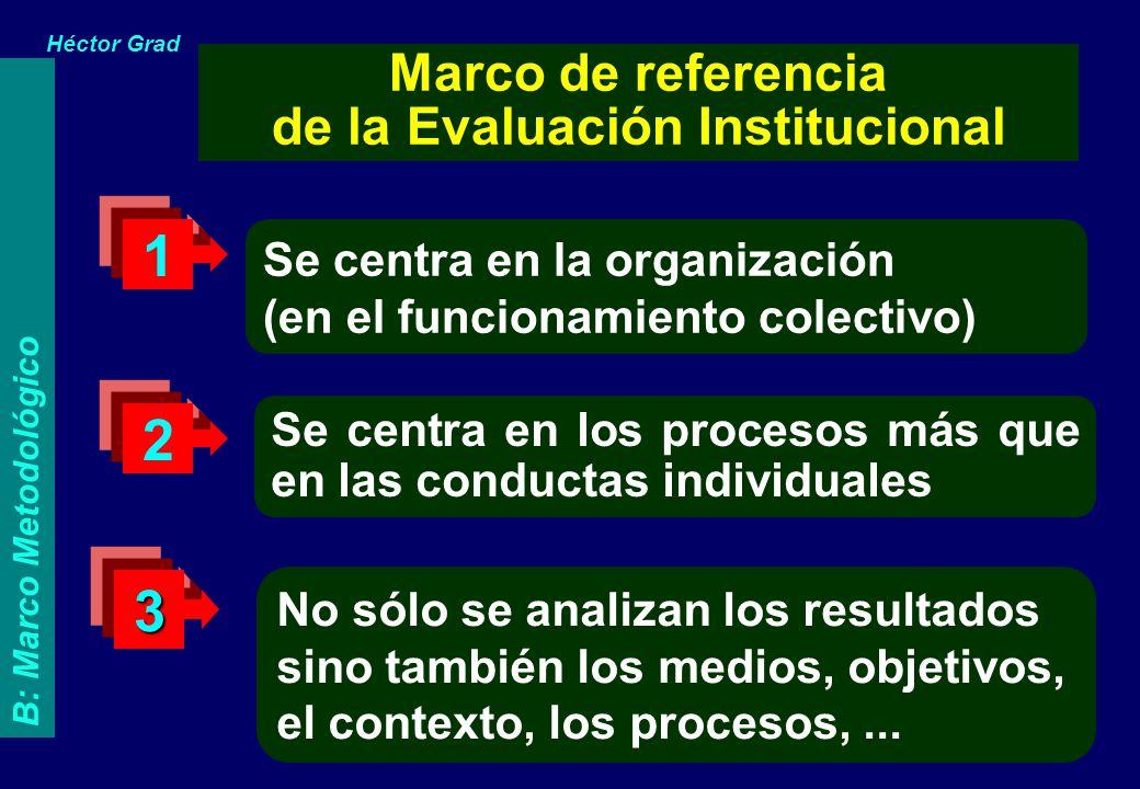 Se centra en la organización (en el funcionamiento colectivo) Se centra en los procesos más que en las conductas individuales No sólo se analizan los