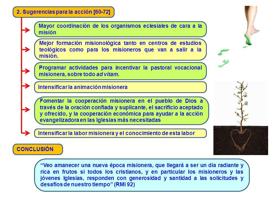 2. Sugerencias para la acción [60-72] Mayor coordinación de los organismos eclesiales de cara a la misión Mejor formación misionológica tanto en centr