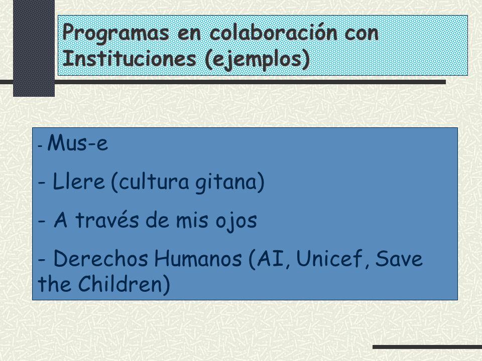 - Mus-e - Llere (cultura gitana) - A través de mis ojos - Derechos Humanos (AI, Unicef, Save the Children) Programas en colaboración con Instituciones