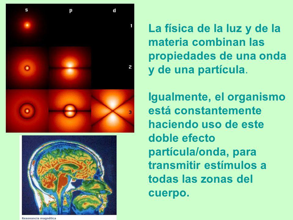 - La física cuántica descubrió que el elemento más básico es el cuanto. - El cuanto es el salto que experimenta la energía de un corpúsculo cuando abs