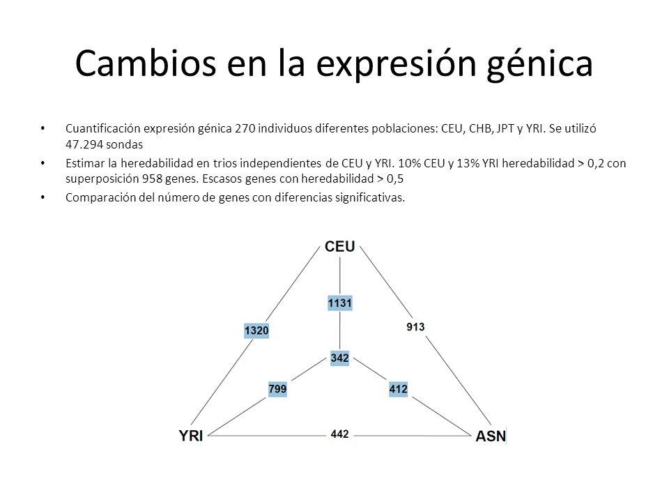 Cambios en la expresión génica Cuantificación expresión génica 270 individuos diferentes poblaciones: CEU, CHB, JPT y YRI. Se utilizó 47.294 sondas Es