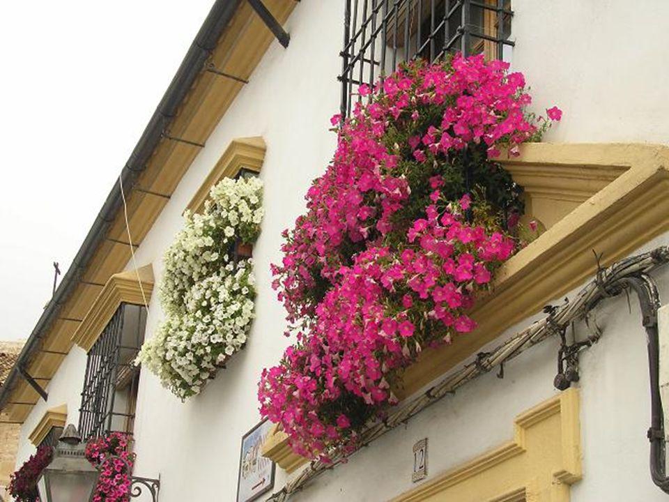 …los balcones…