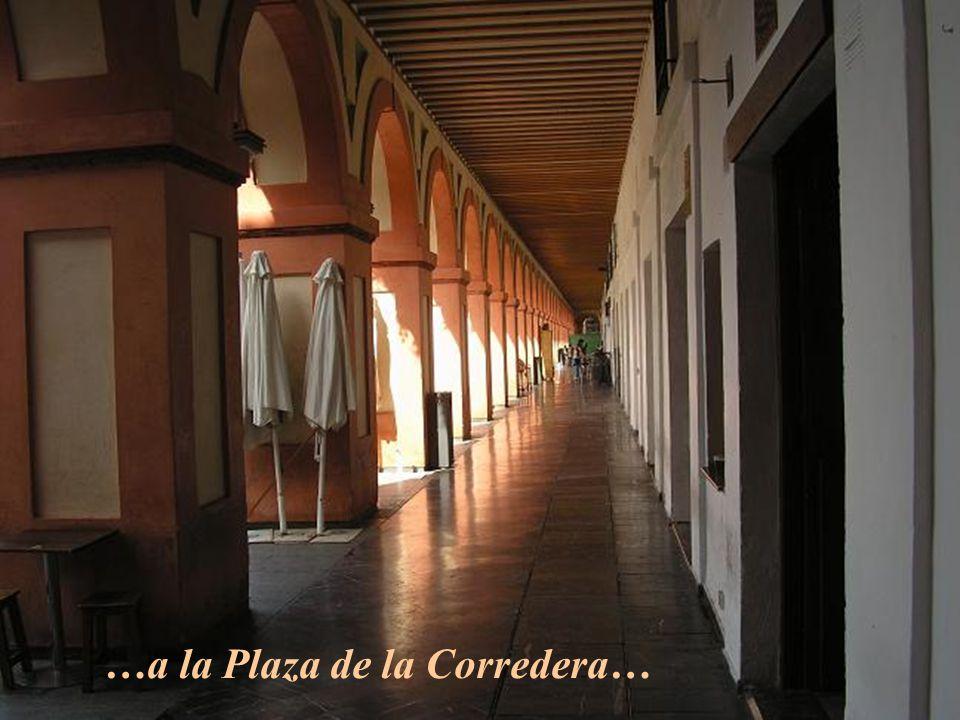 Desde la Catedral (antigua Mezquita)…