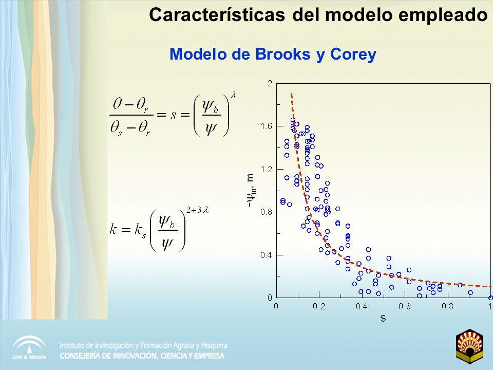 Descenso de la humedad del suelo durante un periodo de 45 días con e p = 6 mm día -1 Características del modelo empleado