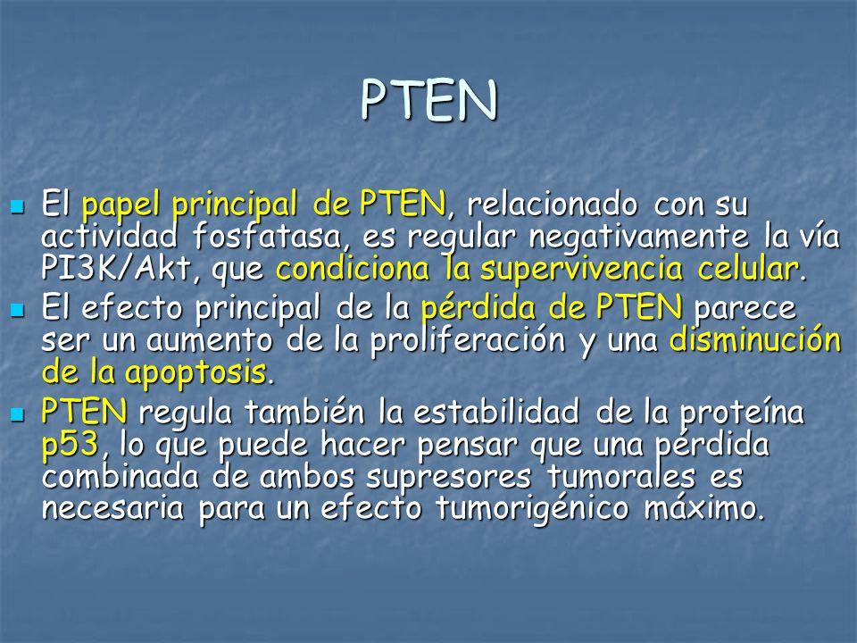PTEN En cáncer de próstata la pérdida completa de la expresión de PTEN se correlaciona con CPHR y es responsable de las MTS, en particular parece ser que puede facilitar las MTS óseas.