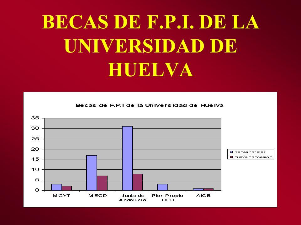 BECAS DE F.P.I. DE LA UNIVERSIDAD DE HUELVA