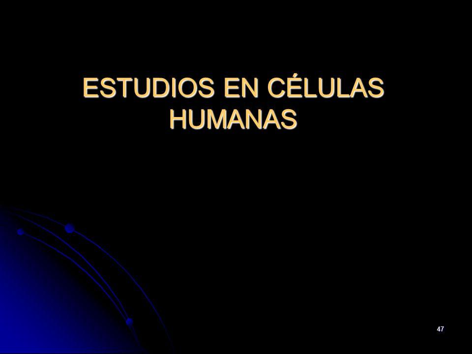 47 ESTUDIOS EN CÉLULAS HUMANAS