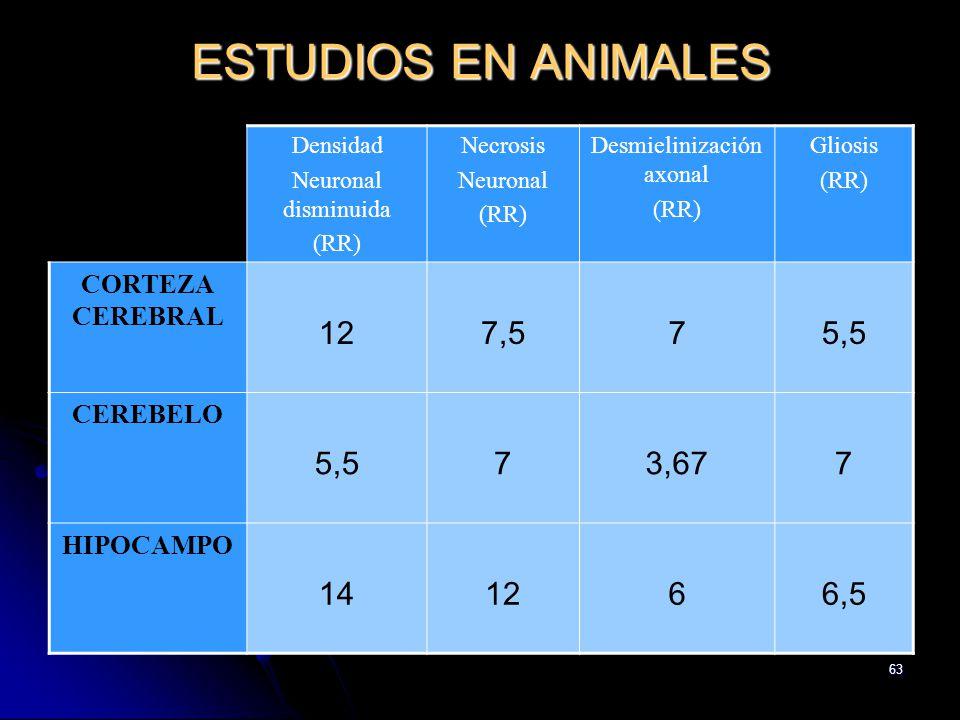 63 ESTUDIOS EN ANIMALES Densidad Neuronal disminuida (RR) Necrosis Neuronal (RR) Desmielinización axonal (RR) Gliosis (RR) CORTEZA CEREBRAL 127,575,5