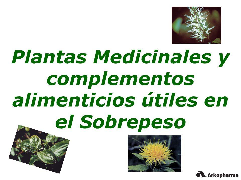 Plantas Medicinales y complementos alimenticios útiles en el Sobrepeso