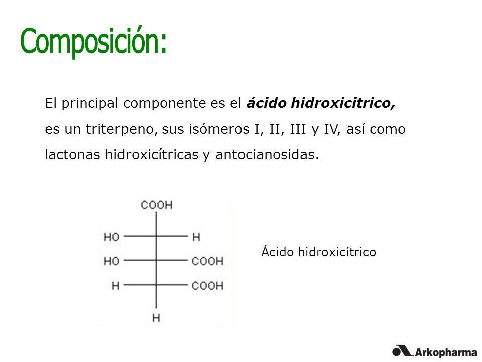 El principal componente es el ácido hidroxicitrico, es un triterpeno, sus isómeros I, II, III y IV, así como lactonas hidroxicítricas y antocianosidas