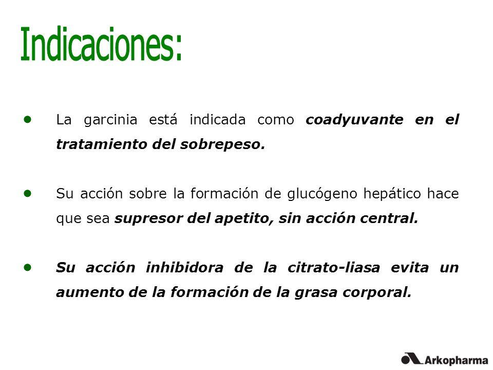 La garcinia está indicada como coadyuvante en el tratamiento del sobrepeso. Su acción sobre la formación de glucógeno hepático hace que sea supresor d