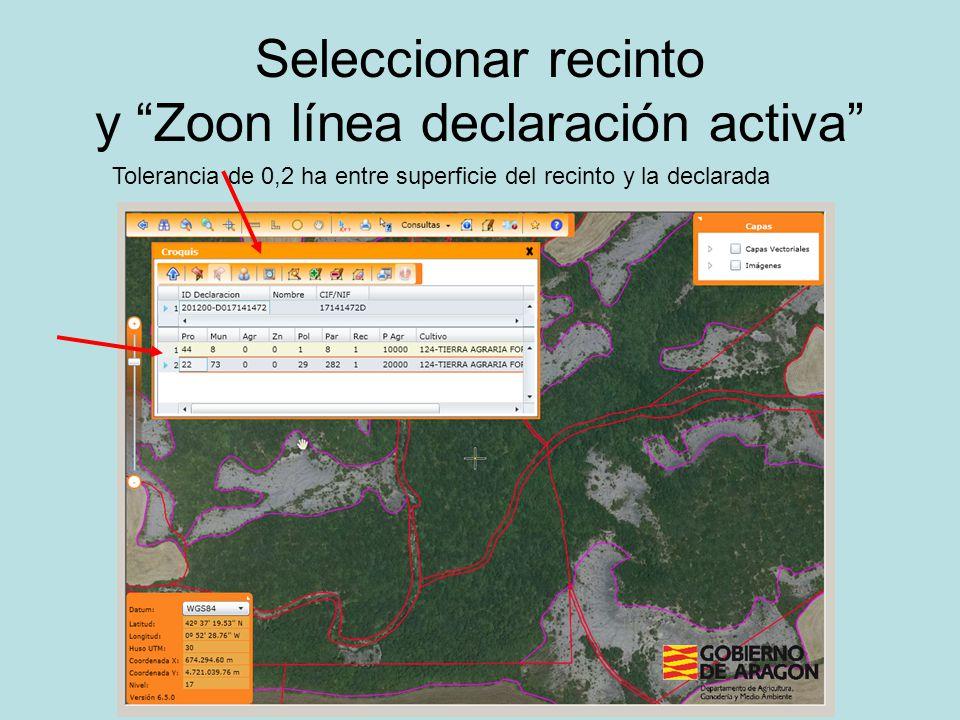 Seleccionar recinto y Zoon línea declaración activa Tolerancia de 0,2 ha entre superficie del recinto y la declarada
