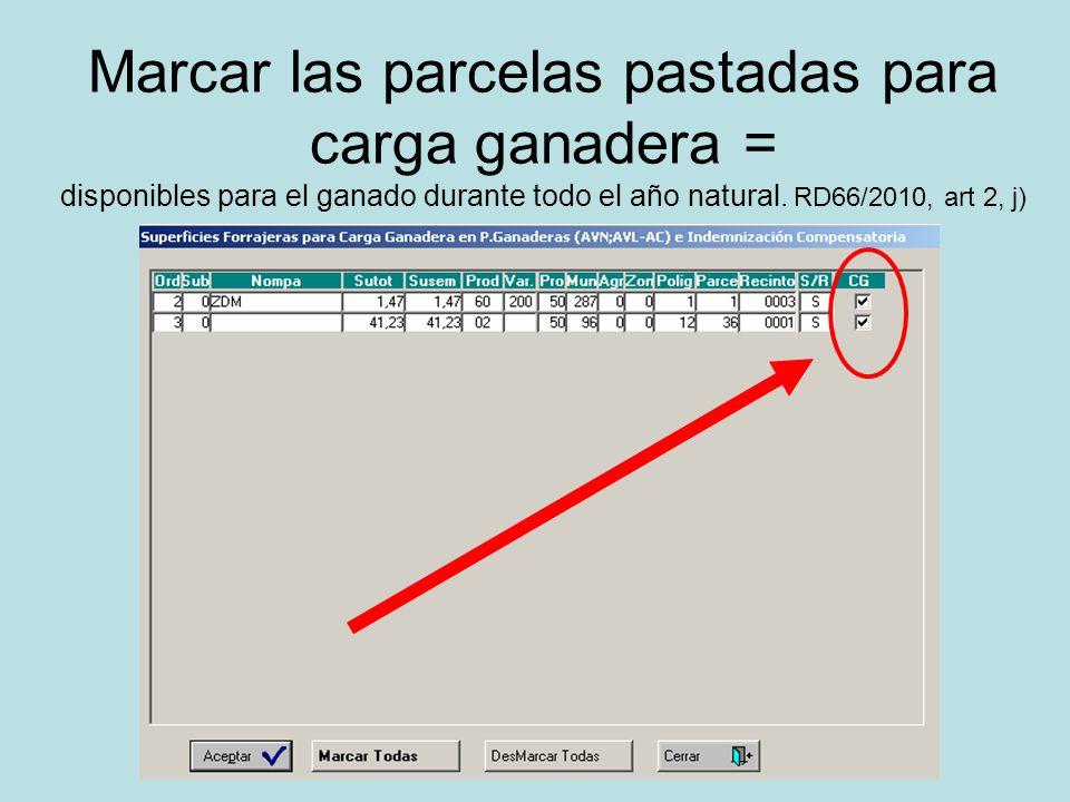 Marcar las parcelas pastadas para carga ganadera = disponibles para el ganado durante todo el año natural. RD66/2010, art 2, j)