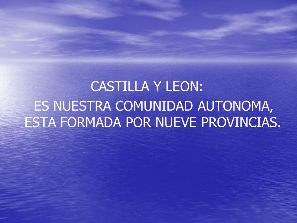 CASTILLA Y LEON: ES NUESTRA COMUNIDAD AUTONOMA, ESTA FORMADA POR NUEVE PROVINCIAS.