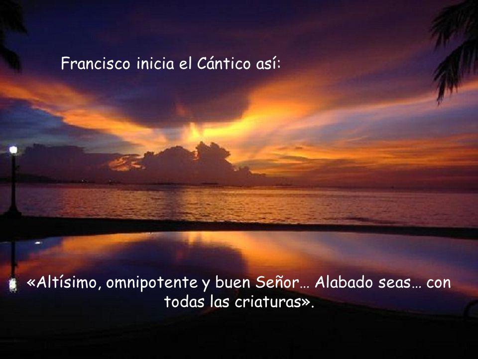 Nos dirigimos a ti, Francisco, y te pedimos: enséñanos a ser «instrumentos de la paz», de la paz que tiene su fuente en Dios, la paz que nos ha traído