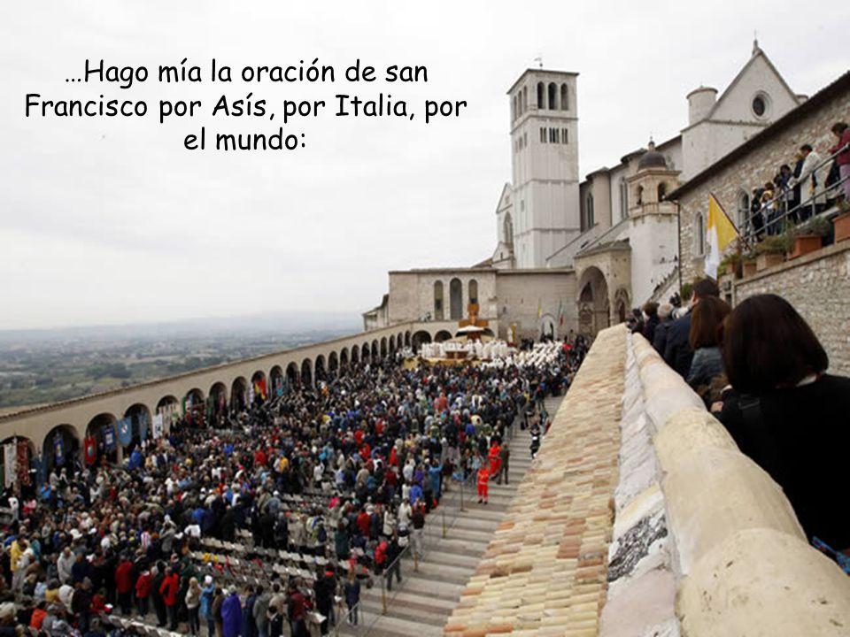 Nos dirigimos a ti, Francisco, y te pedimos: Alcánzanos de Dios para nuestro mundo el don de la armonía, la paz y el respeto por la creación.