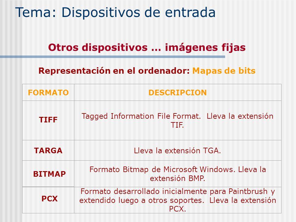 Tema: Dispositivos de entrada Otros dispositivos … imágenes fijas Representación en el ordenador: Mapas de bits TARGA FORMATODESCRIPCION TIFF Tagged I