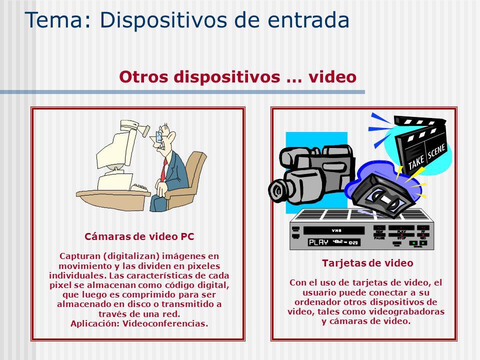 Cámaras de video PC Capturan (digitalizan) imágenes en movimiento y las dividen en pixeles individuales. Las características de cada pixel se almacena