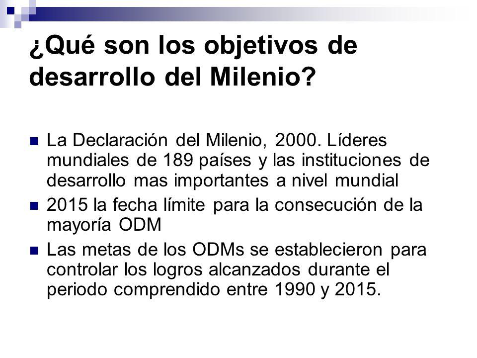 ¿Qué son los objetivos de desarrollo del Milenio.La Declaración del Milenio, 2000.