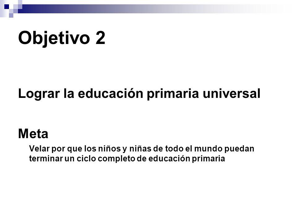 Objetivo 2 Lograr la educación primaria universal Meta Velar por que los niños y niñas de todo el mundo puedan terminar un ciclo completo de educación primaria