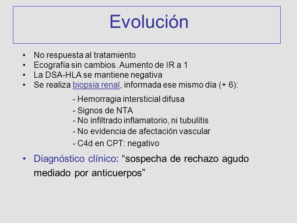 No respuesta al tratamiento Ecografía sin cambios. Aumento de IR a 1 La DSA-HLA se mantiene negativa Se realiza biopsia renal, informada ese mismo día