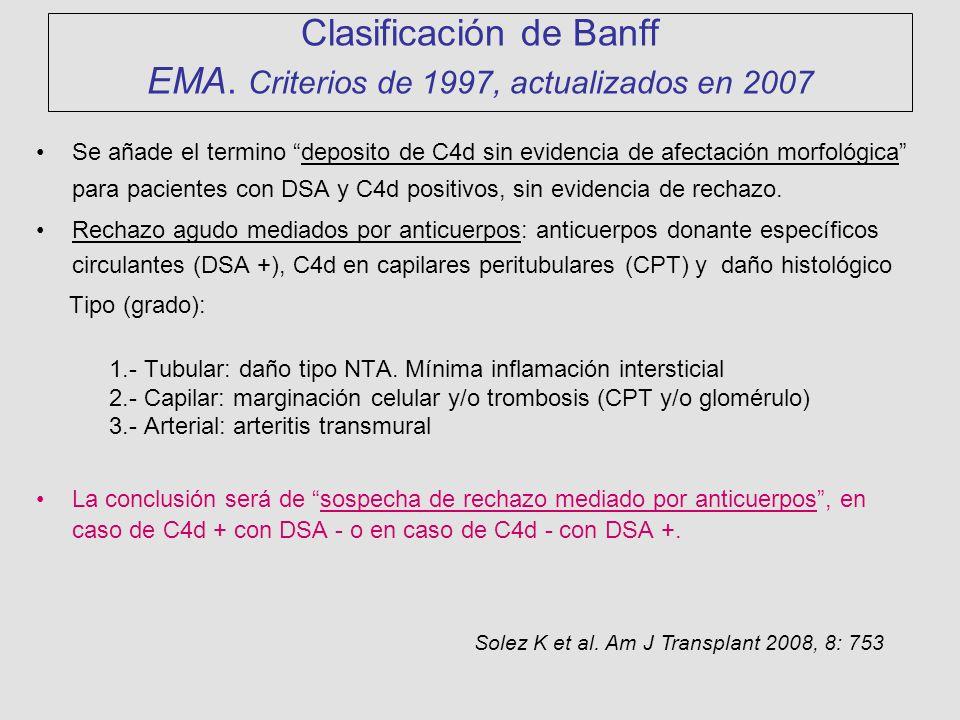 Clasificación de Banff EMA. Criterios de 1997, actualizados en 2007 Se añade el termino deposito de C4d sin evidencia de afectación morfológica para p
