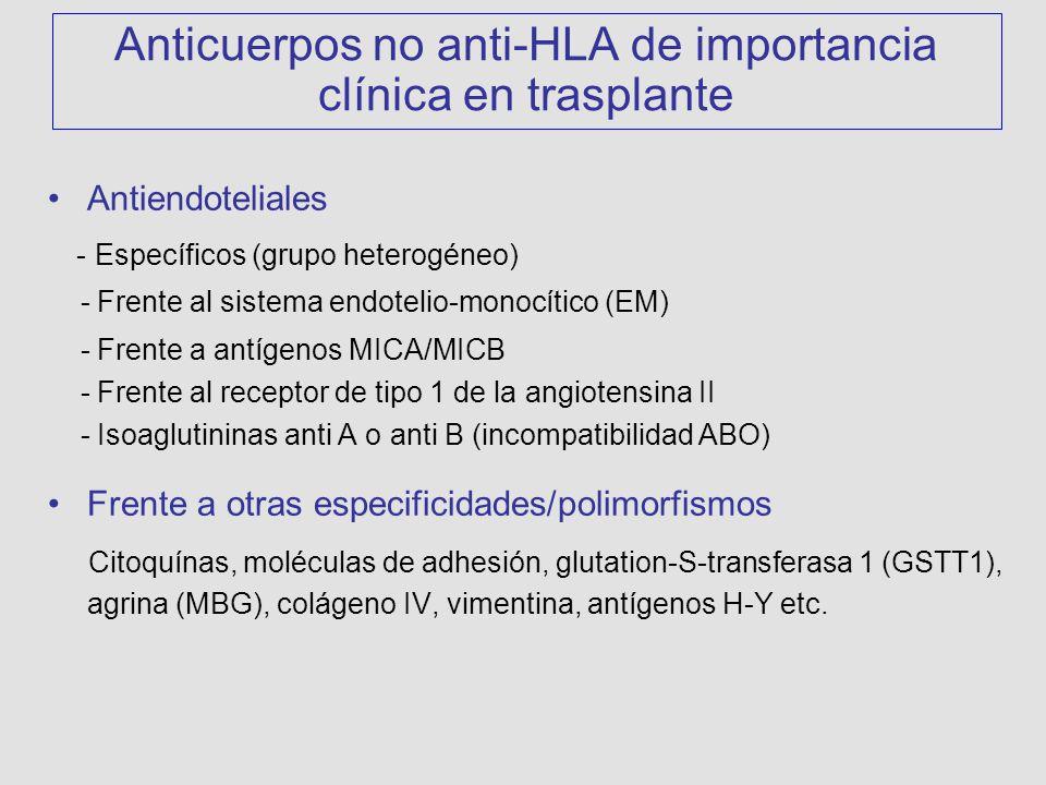 Anticuerpos no anti-HLA de importancia clínica en trasplante Antiendoteliales - Específicos (grupo heterogéneo) - Frente al sistema endotelio-monocítico (EM) - Frente a antígenos MICA/MICB - Frente al receptor de tipo 1 de la angiotensina II - Isoaglutininas anti A o anti B (incompatibilidad ABO) Frente a otras especificidades/polimorfismos Citoquínas, moléculas de adhesión, glutation-S-transferasa 1 (GSTT1), agrina (MBG), colágeno IV, vimentina, antígenos H-Y etc.