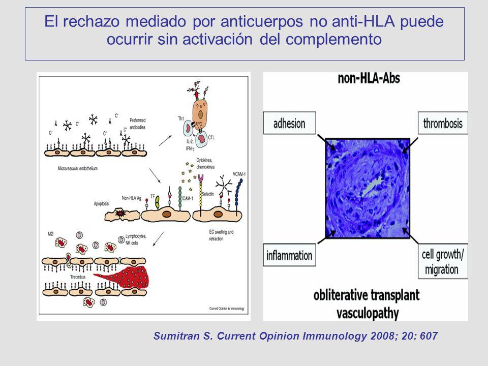El rechazo mediado por anticuerpos no anti-HLA puede ocurrir sin activación del complemento Sumitran S. Current Opinion Immunology 2008; 20: 607