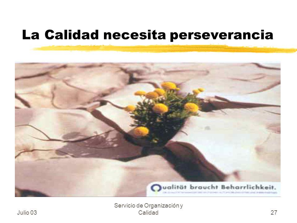 Julio 03 Servicio de Organización y Calidad27 La Calidad necesita perseverancia